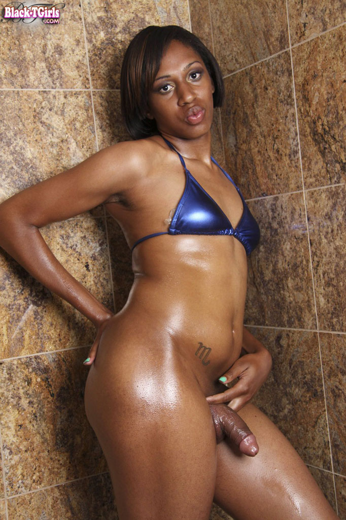 black tgirls tubes