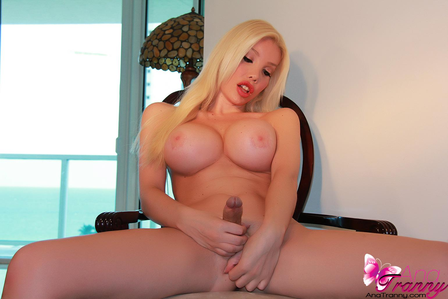 Big Tit Shemale Porno