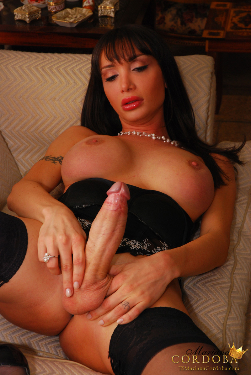 Shemale Beauty Big Cock