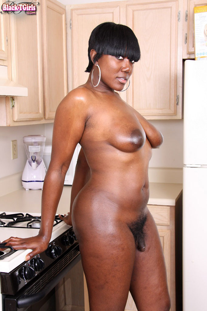 Black Bbw Shemale
