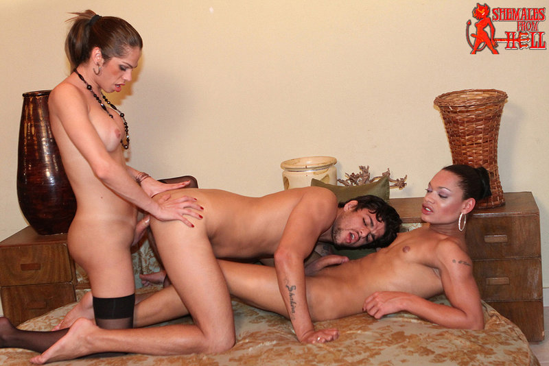 from Jaden shemales fucks a man in threesome